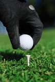 Golf. A hand is putting a golf ball on the tee Stock Photos