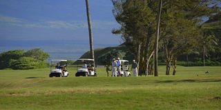 Golf Fotografia Stock
