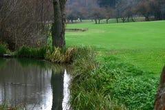 Golf #6 Arkivfoton