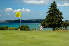 Golf - The Approach. Golfer approaching green on coastal course Stock Photos