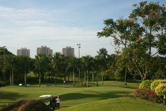 Golf Asia Stock Image