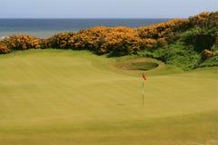 Golf auf dem Meer Stockfotografie