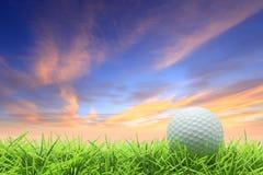Golf auf Gras stockbild