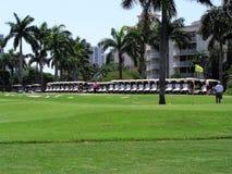 Golf-auto's Royalty-vrije Stock Afbeelding