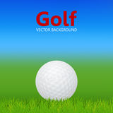 Golf background - ball on grass. Golf background - 3d realistic golf ball on grass. Vector EPS10 illustration Royalty Free Stock Photography