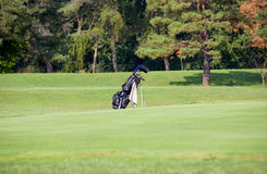 Golf Bag. A Golf Bag Sitting on a Golf Course royalty free stock image