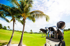 Golf bag with clubs against green course and palms. Golf bag with different types of clubs against beautiful scenery of course Royalty Free Stock Photo