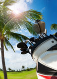 Golf bag with clubs against palm tree and sky. Close-up picture of golf bag with different types of clubs against sunny palm trees, bottom view Stock Image