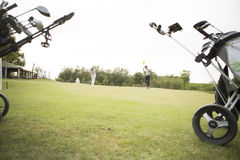 Golf bags with clubs. On green field Stock Image