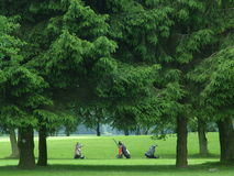 Golf bags on the fairway Royalty Free Stock Photography
