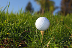 Golf bal Stock Photos