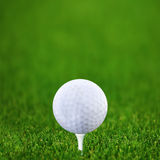 Golf-bal e golf verde Immagine Stock