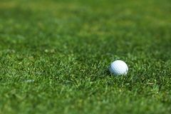Golf-bal op cursus Royalty-vrije Stock Foto's