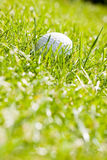 Golf ball. On the green grass Stock Photo