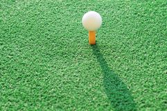 Golf Ball. On the Green Grass with green background Stock Photography
