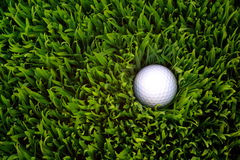 Golf Ball. In rough grass Royalty Free Stock Photography