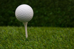 Golf Ball. Closeup of golf ball on a tee Royalty Free Stock Image
