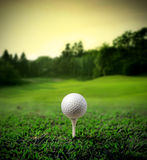 Golf ball. Illustration of a golf ball in the middle ofa green meadow
