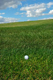 Golf Ball. In the rough stock photo