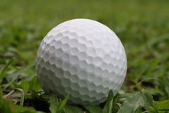 Golf ball. A golf ball is lying on a grassy fairway of a golf course Stock Photos