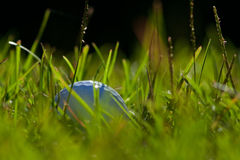 Golf ball. In a bad lie Royalty Free Stock Images