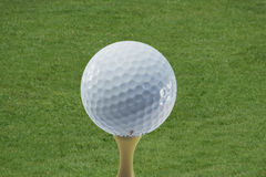 A golf ball. On a tee ready to be hit stock image