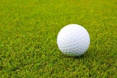 Golf ball on green grass. Golf ball isolated on the green grass stock photo