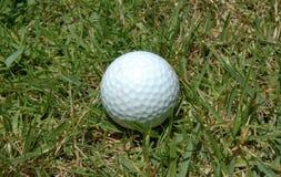 Golf Ball 2. Golf ball close up on grass Stock Photography