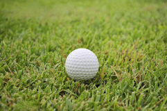 Golf Ball Stock Images