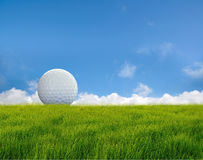 Golf ball. On grass field stock photography