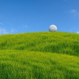 Golf ball. On grass field royalty free stock photo