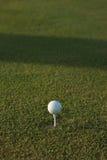 Golf ball. On green grass royalty free stock photos