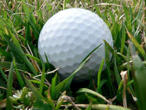 Golf ball. Close up photo of a golf ball lying in green grass stock photography