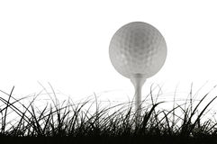 Golf ball. Picture of a golf ball in a tee Royalty Free Stock Image
