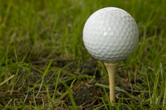 Golf Ball. Sitting on a tee Royalty Free Stock Images