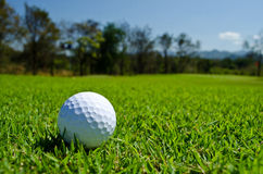 Golf ball. A white golf ball on green field with blue sky Stock Photo