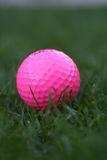 Golf ball. Pink golf ball in the grass Royalty Free Stock Image