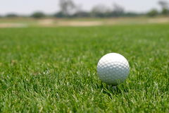 Golf ball. Close up of a golf ball on green lawn Royalty Free Stock Images