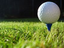 Golf Ball. A white golf ball on a tee royalty free stock image