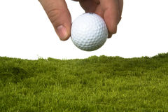 Golf ball. Male jand putting down a golf ball on grass with white background Royalty Free Stock Photos