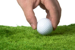 Golf ball. Male jand putting down a golf ball on grass with white background Stock Image