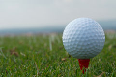 Golf ball. White golf ball on tee royalty free stock photo