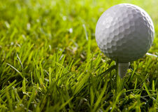 Golf ball. On tee in grass Stock Images
