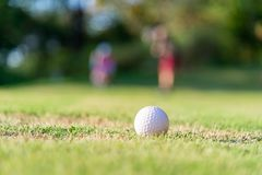 Golf ball approach to the hold on the green. Couple golf player ptiching golf ball in the background. royalty free stock photo