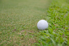 Golf ball. Background hole  lifestyle sand sport Royalty Free Stock Image