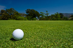 A golf ball in  a beatiful view. A golf ball on green field with blue sky as background Royalty Free Stock Image