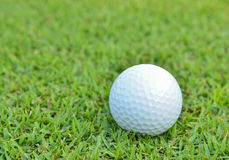 Golf ball on beautiful deep grass Stock Images