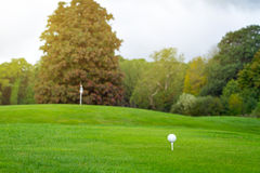 Golf ball on the beautiful Irish course Royalty Free Stock Image