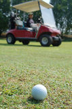 Golf ball and buggy. A man drive buggy to looking for the golf ball stock image