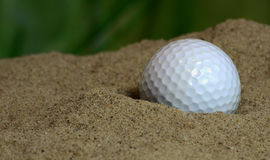 Golf ball in bunker Royalty Free Stock Photo